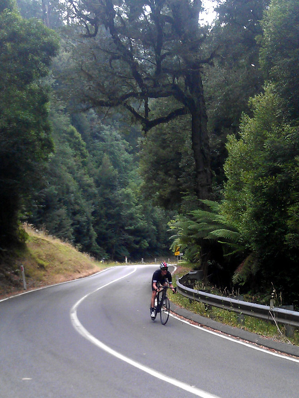 Descending Mt Donna Buang. Photo: Jeremy